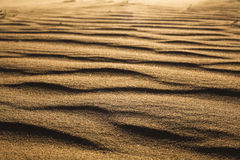 Surface level shot of the desert and the wind pattern on the sand Stock Images
