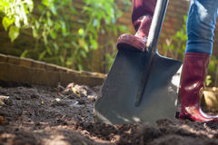 Surface level view of senior woman standing with shovel on dirt Royalty Free Stock Photography