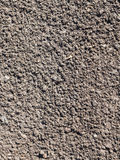 Surface of loosened soil with grass seeds Stock Photo