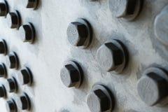 Surface métallique grise avec les têtes de boulon hexagonales Image stock