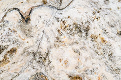 The surface of marble with brown tint Royalty Free Stock Images