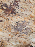 Surface of the marble. Pic of surface of the marble Stock Images