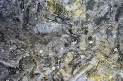 Surface of the marble stone treated Stock Photography