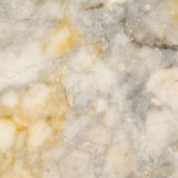 Surface of the marble with white tint Stock Image