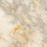 Surface of the marble with white tint Stock Images