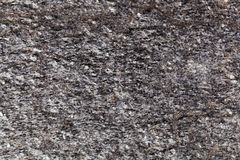 Surface of a mica rich gneiss. Of Paleozoic age from Germany Royalty Free Stock Photography