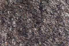 Surface of a mica rich gneiss. Of Paleozoic age from Germany Stock Image