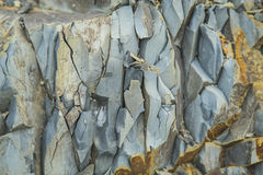 Surface of mineral sandstone rock Royalty Free Stock Image