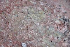 Surface of natural  stone as background Stock Images