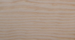 The surface of natural wood. S easily visible texture of light wood Stock Photography