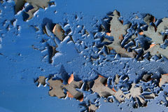 Surface of the old blue wall. The peel off surface of the old painted wall in blue color Stock Images