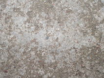 Surface of old concrete Royalty Free Stock Images