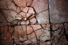 Surface of the old and damaged tiles Stock Images