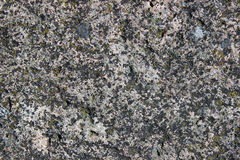 The surface of an old rock Royalty Free Stock Photo