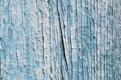 The surface of the old wooden Board, painted blue paint. The wall of a wooden house. The paint cracked and flaked. Many different cracks and crevices. The stock photography