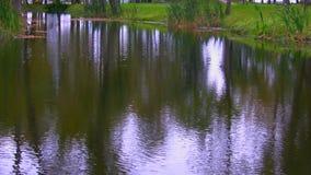 Surface ondulée d'étang ou de rivière banque de vidéos