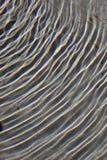 Surface ondulée de l'eau Image stock