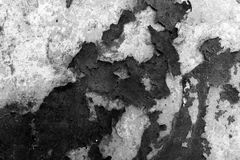 Surface with peeling off flakes of tar. Black and white texture. Royalty Free Stock Photo
