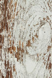 Surface peeling paint peeling Royalty Free Stock Photography