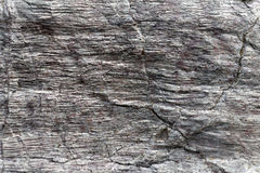 The surface of Phyllite schists of Proterozoic age Stock Photo