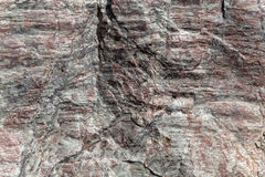 The surface of Phyllite schists of Proterozoic age Stock Photography