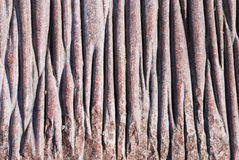 Surface of pink texture stone Stock Photos