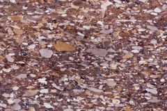 Surface of a red sandstone with siliceous particles. Surface of a red sandstone of Jurassic age, with siliceous particles Stock Photos