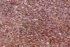 Surface of a red sandstone with siliceous particles. Surface of a red sandstone of Jurassic age, with siliceous particles Stock Images