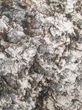 Surface of rock Royalty Free Stock Image