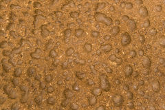 Surface is rough and rocky Cave floor. Surface is rough and rocky Cave floor With brown soil Royalty Free Stock Photography