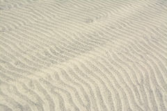 Surface of sand dune in the desert Royalty Free Stock Photo