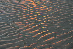 Surface of sand at sunset. Surface of sand with corrugations created by waves illuminated  by light at sunset Royalty Free Stock Photos