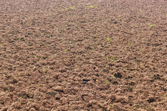 Surface soil tillage. Surface soil tillage agriculture, which was completed in preparation for planting crops Royalty Free Stock Photos