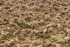 Surface soil tillage. Surface soil tillage agriculture, which was completed in preparation for planting crops Stock Photography
