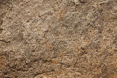 Surface of the stone gray-brown Stock Images