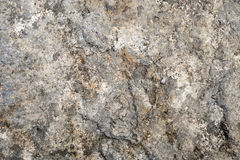 Surface of stone. Texture of brown tint stone for background. Royalty Free Stock Photo