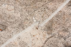 Surface of stoneware close up full of out of focus, granular shapes. Stock Photos