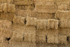 Surface of the straw bales Royalty Free Stock Photo