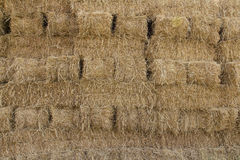 Surface of the straw bales Stock Photo