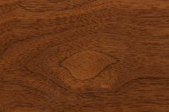 Surface of teak wood background for design and decoration. Royalty Free Stock Image