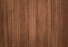 Surface of teak wood for background Stock Photography