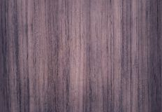 Surface of teak wood for background Royalty Free Stock Photos