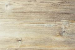 Surface of teak wood Royalty Free Stock Photo