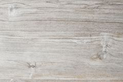 Surface of teak wood Stock Images