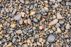 Surface texture of wet sea beach pebbles of medium and small size. The surface texture of wet sea beach pebbles of medium and small size Stock Photography