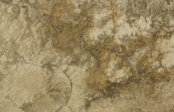Surface of the travertine. Brown. Stock Image