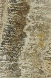 Surface of the travertine. Tints of brown. Royalty Free Stock Image