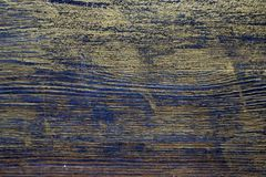 Wood texture treated with ebony stain and gold paint. Surface treatment of antique wood. Wood texture treated with ebony stain and gold paint royalty free stock photography