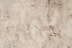 surface vägg för grunge Royaltyfri Fotografi