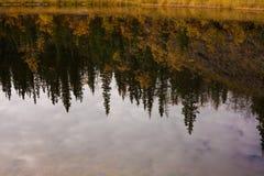 surface vatten för fallreflexioner Arkivbild
